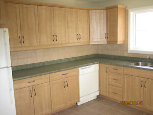 Large 3 bedroom apartment near Wortley Village