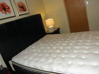 Queen size mattress Sealy Rossellini Pillow Top Plush