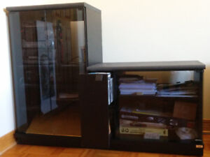 Cabinet for media/TV, black with smoked glass doors