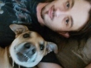 30/male/single/quiet with good income looking for bchlr, 1bd