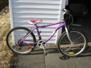 "24"" LADIES MOUNTAIN BIKE"