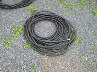 Black hose (50 feet)