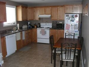 2 bedroom above ground apt. in Southlands