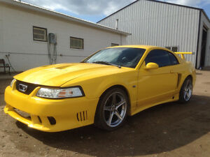 2002 Ford Mustang Saleen clone Coupe (2 door)