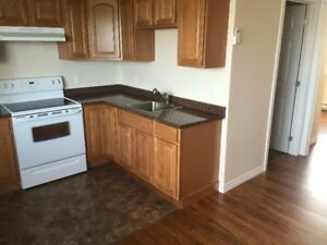 Modern 2 bedroom Apt Heat Lights and A/C included