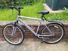 Apollo Jewel Women's bike