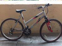 Apollo Men Mountain Bike