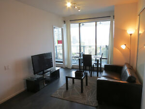 Amazing 1BR + Guest Room, Yorkville - Available Dec 22