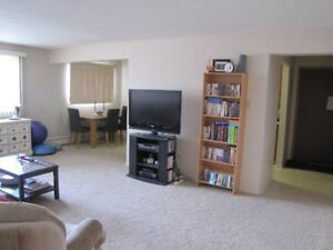 Quiet 2 Bedroom Apartment Close to Downtown