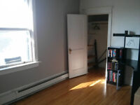 Room in the Glebe for rent for July and/or August + FREE Bicycle