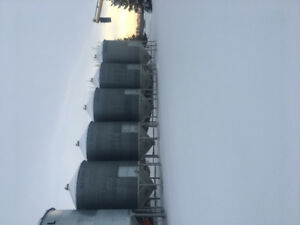 5 westeel roscoe bins on hoppers