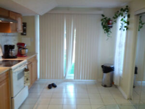 SPACIOUS CLEAN SELF CONTAINED OPEN CONCEPT BASEMENT SUIT( WALK O