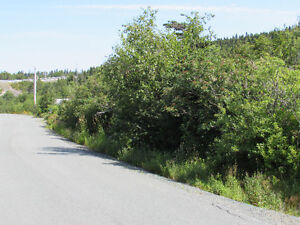 155-161 COUNTRY PATH ROAD - LONG POND, CBS St. John's Newfoundland image 5