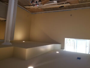 Professional Painter-Contractor