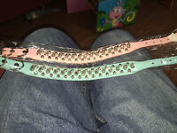 2 spiked dog collars