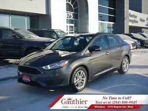 2016 Ford Focus SE w/Back-Up Camera *LOCAL*  - Low Mileage