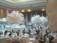 22 WEDDING OSTRICH FEATHERS CENTERPIECES $1800/ RENT 50 EA