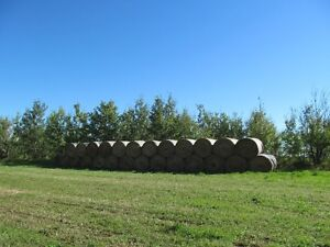1400lb Hay Bales For Sale