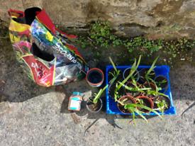 Gardening bits bundle