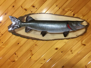 42. Inch Muskie replica for sale