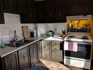 downtown room for rent $550