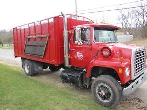 Cedar shavings livestock bedding, water haulage & transport! Peterborough Peterborough Area image 1