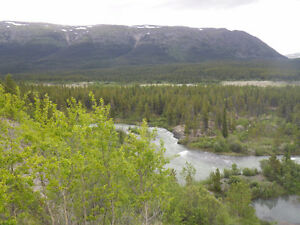 Atlin Pine Creek Placer Gold Claims