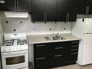 Beautiful 2 Bedroom newly renovated apartment -April 1st