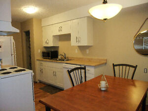 RENOVATED CONDO CLOSE TO DOWNTOWN - Great Value