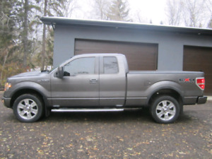 2010 Ford F150 4x4 FX4 Package.