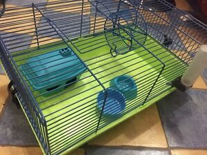 Cage of hamster or small animal and pine wood bedding