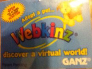 Webkinz code