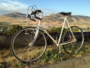 Apollo Prestige XL - Classic road bike