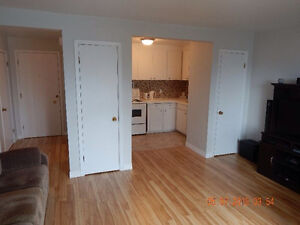 LOWEST PRICE RENOVATED CONDO IN THE CITY!!