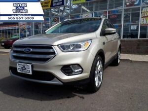 2017 Ford Escape Titanium  - $215.58 B/W