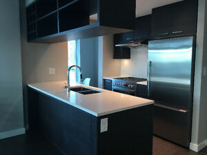 Mandarin Residences - large one bedroom suite