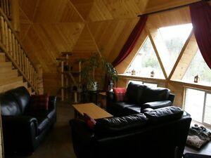 Unique Geodesic Dome Williams Lake Cariboo Area image 3