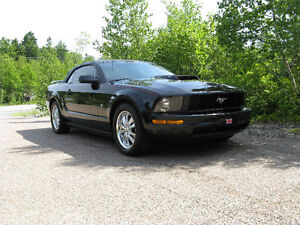 2005 Ford Mustang Convertible V6 MINT!