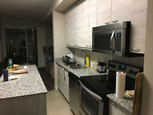 NEW!! 1 Bedroom Luxury Apartment! Lester St., fully furnished