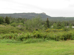 1 MILLVILLE ROAD, AVONDALE..  SECLUDED..1 ACRE LOT St. John's Newfoundland image 6
