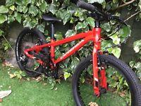 "Orbea MX 20 Team 20"" junior mountain bike (like islabikes and frog bikes)"