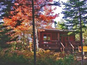 Enjoy the beautiful Cape Breton Fall in a cosy Log Cottage