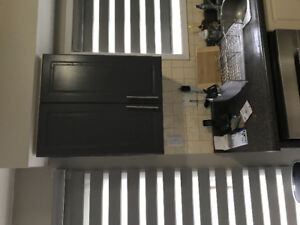 MDF Kitchen Cabinets - Used