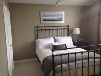 Modern Home, Large Bedroom Suite & Shared Home with Owner