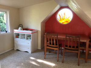 Pet-friendly private room with kitchenette and den
