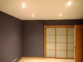 Handyman/painter/plastering and renovations