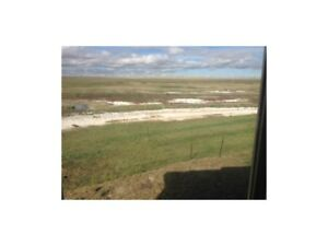 Excellent AFFORDABLE ACREAGE FOR SALE in Rural Vulcan County