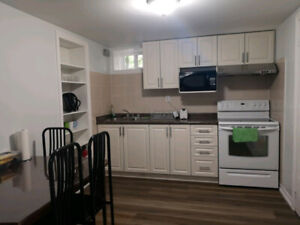 Comfy 3 Bedroom Basement Apartment in Downtown Toronto