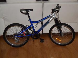 (4) Bicyclette 20 pouces vélos IMPECCABLES très propre