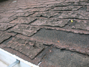 Asphalt Roof replacement. Free quotes.